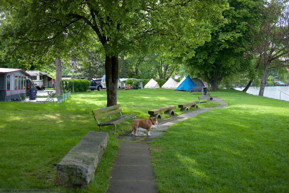 Campsite on lake Zurich, Fischer Fritz