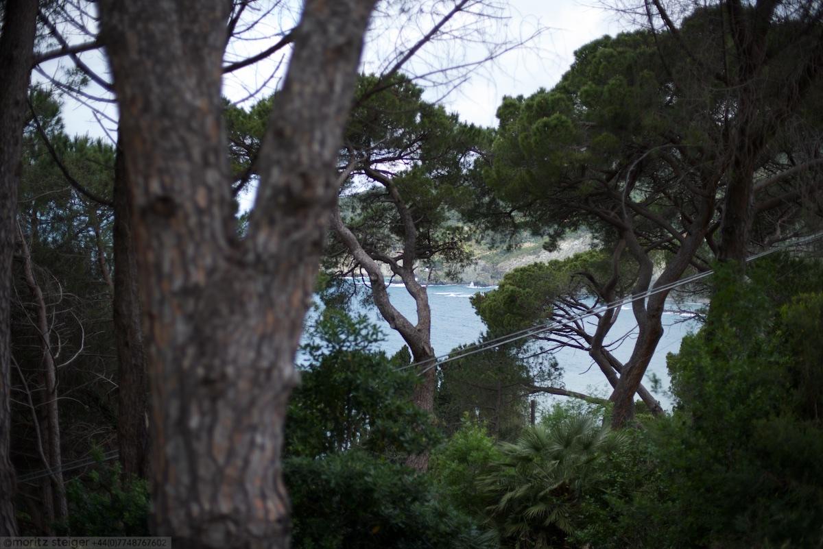 View over Levanto