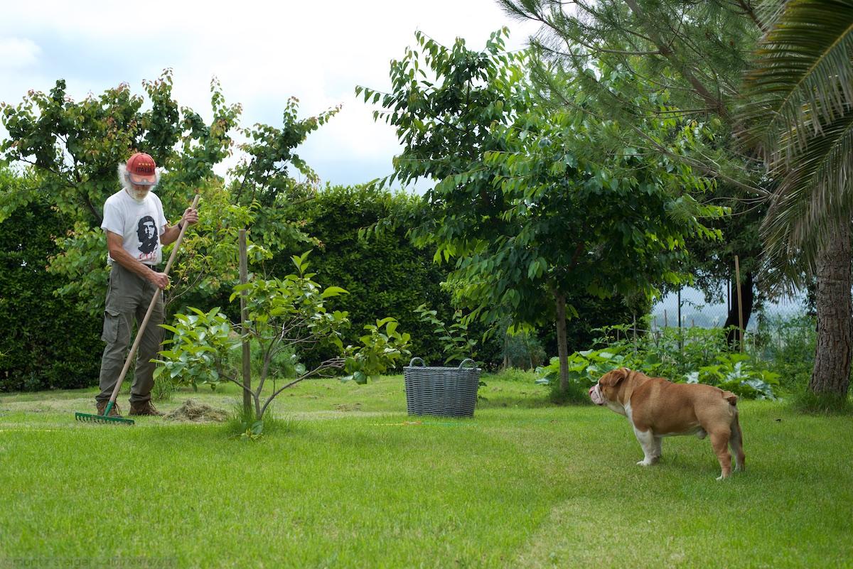 Rene working (under supervision) in the garden.