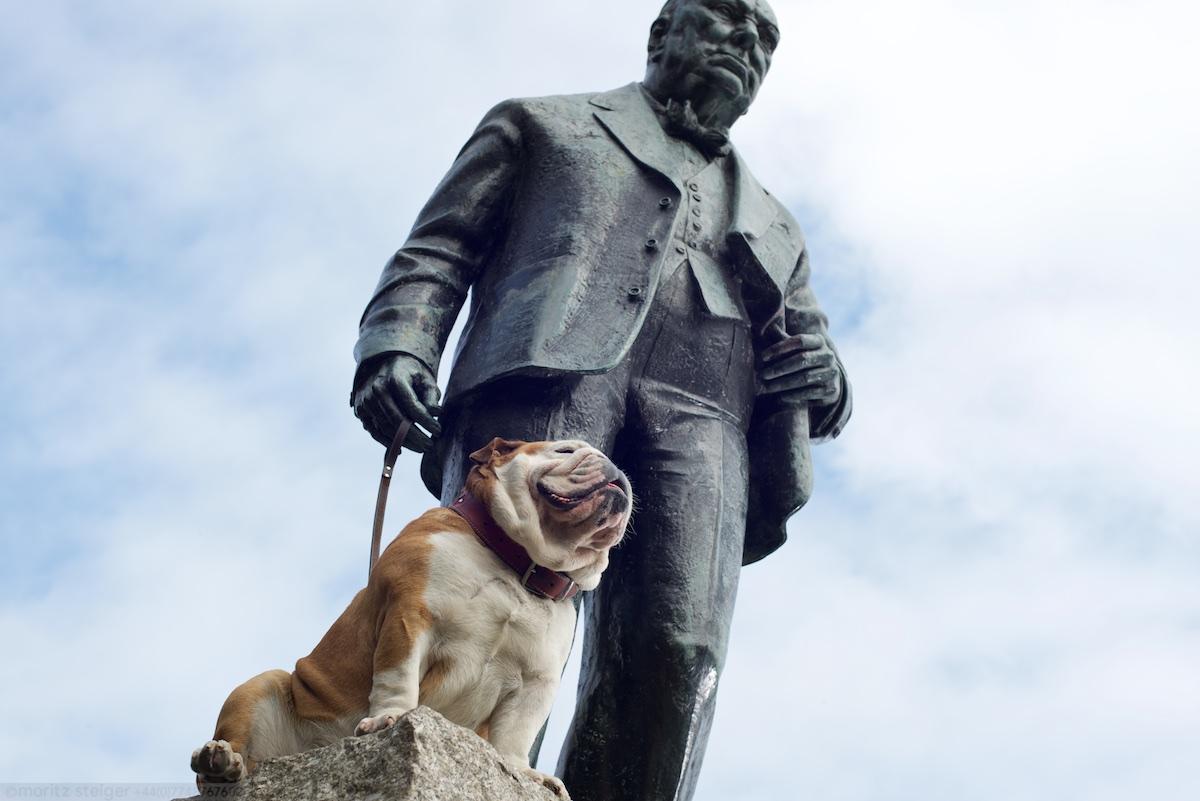 Winston walks Rudy