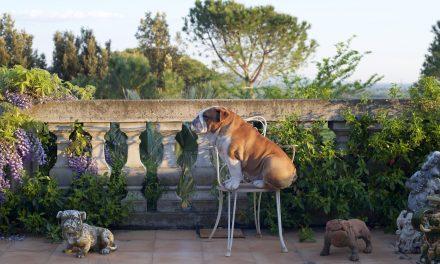 Rudy goes to Poggio Piero