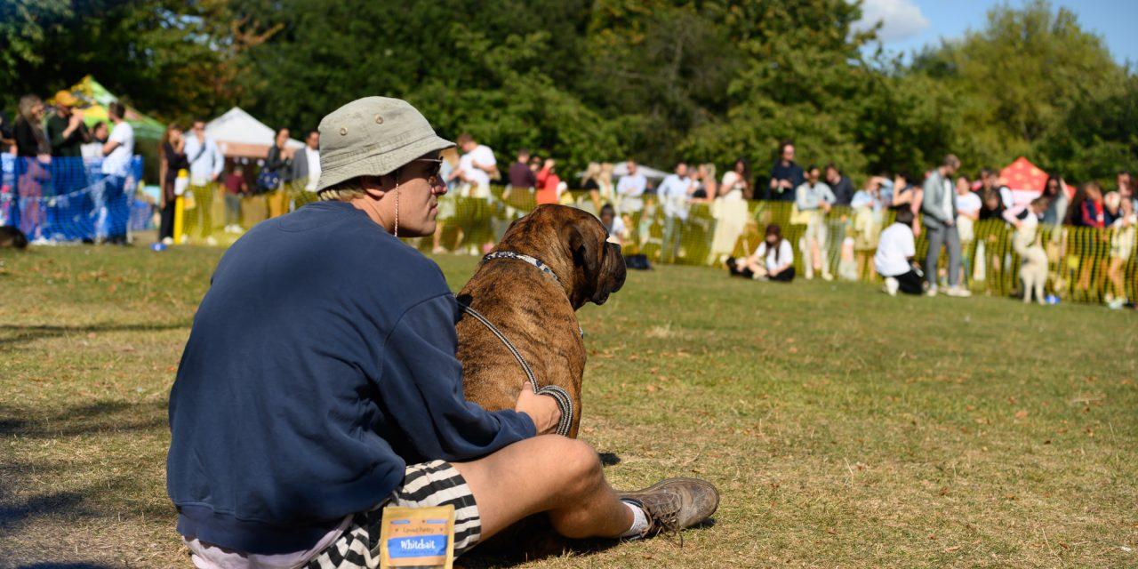 AllDogsMatter Dog Show in Victoria Park